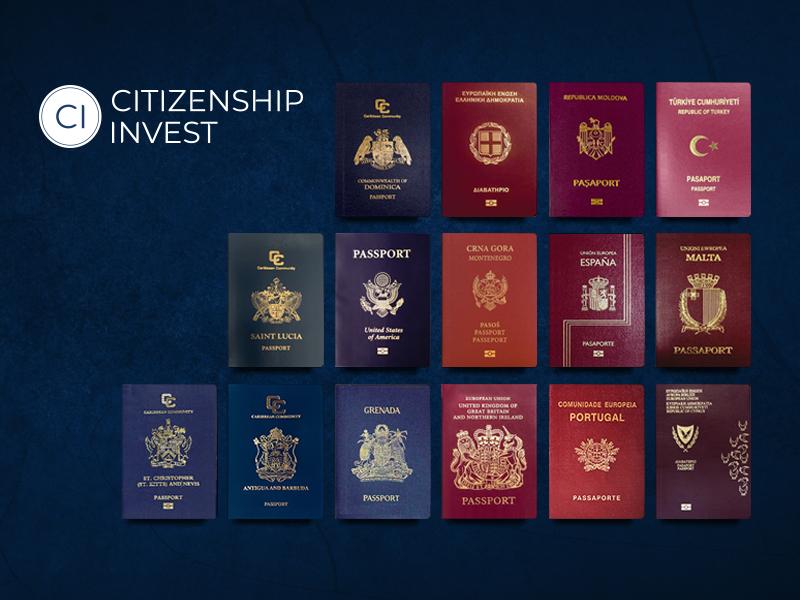 Citizenship Invest | Website Design & Web Development | Element8 Dubai